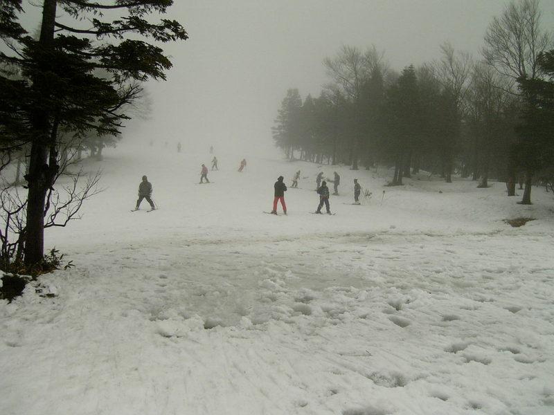 雪を見るためには